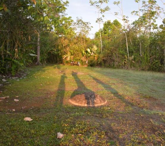 Sombras en Finca 6 copia