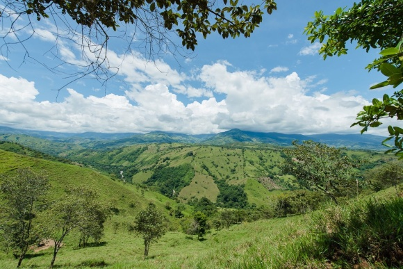 Cordillera Costeña desde Bolas