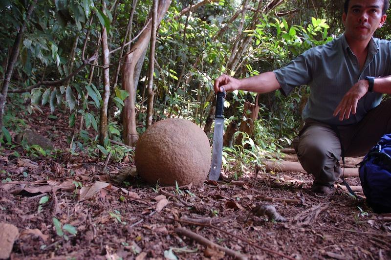 esfera pequeñ bolas