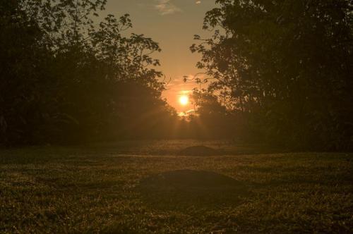 Alineamiento sol esferas Finca 6 2