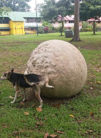 esfera caliza con perro