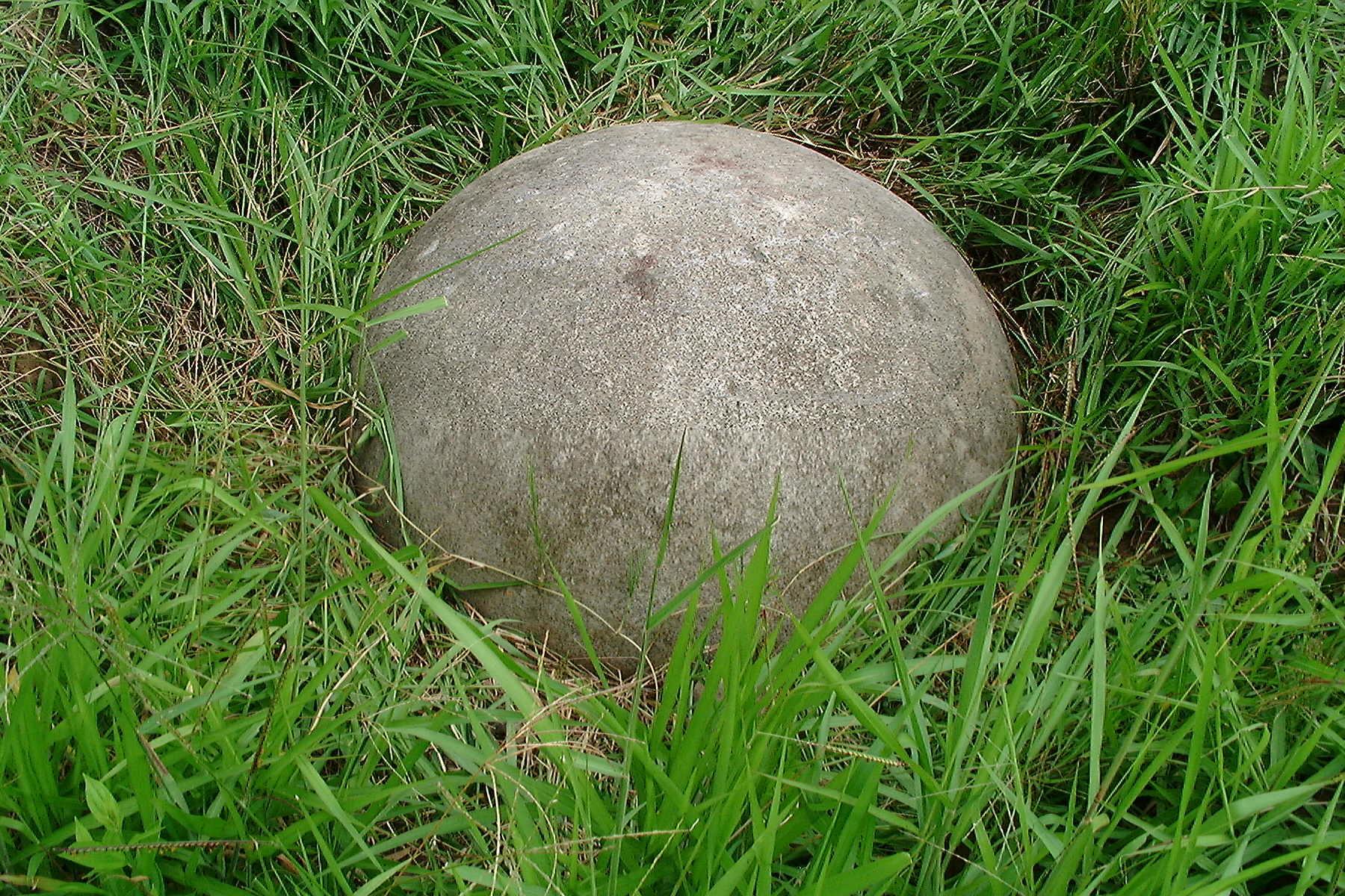 Esfera Pejibaye in situ